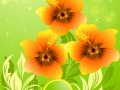 Vector illustration of summer composition with orange hibiscus