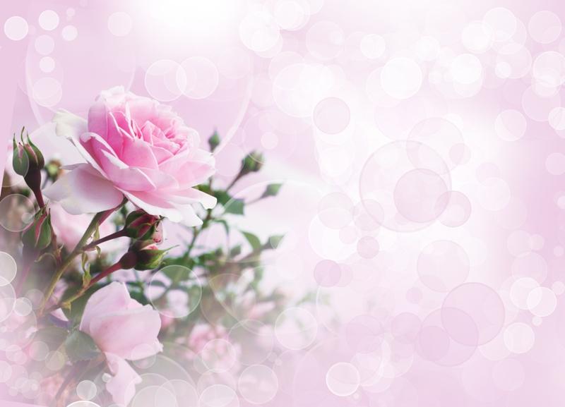 Картинки для фона на открытки с цветами