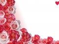 Abstract border, roses