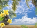 décor exotique vacances tropicales