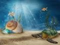 Podwodna sceneria z muszlami, żółwiem i złotymi rybkami