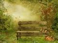 Sad z drewnianą ławką i owocami