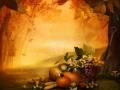 Autumn design - Season fruit