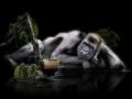 Gorilla, Naturschutz