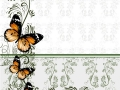 Floral background with wallpaper ornament and butterflies