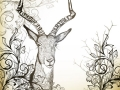 Vintage background with hand drawn antelope