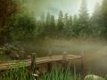 Zamglona sceneria z jeziorem