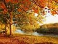 Beautiful Autumn in the park